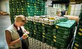 Sanitaire : Roissy-CDG, près de 40 000 lots de produits animaux et végétaux  inspectés chaque année par les SIVEP de l'État